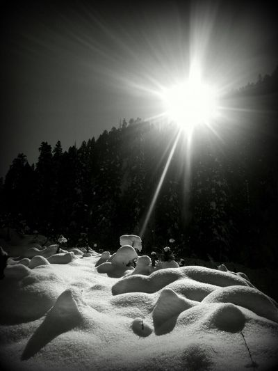 The Glare Of The Winter Sun in the mountains Taking Photos Enjoying Life and Relaxing