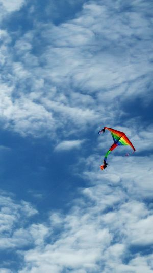 Hanging Out Taking Photos Summer Time  Blue Sky Blue White Clouds Blue Sky White Clouds Kite Kite Flying Colors Colour Of Life Colourful Day At The Beach The Netherlands Domburg  LG4