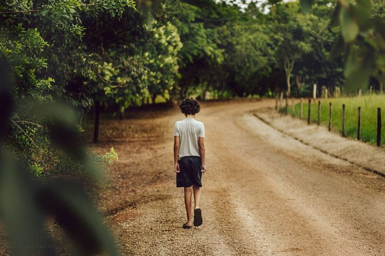 only boy Boy Bestsellers Tree Full Length Back Standing Rear View Walking Human Back Empty Road Pathway Trail Growing Footpath Countryside Treelined