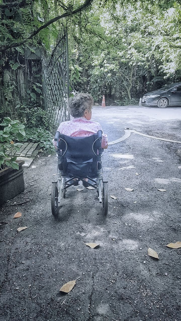 wheelchair, transportation, sitting, one person, physical impairment, real people, senior adult, tree, day, differing abilities, road, outdoors, full length, people, adult