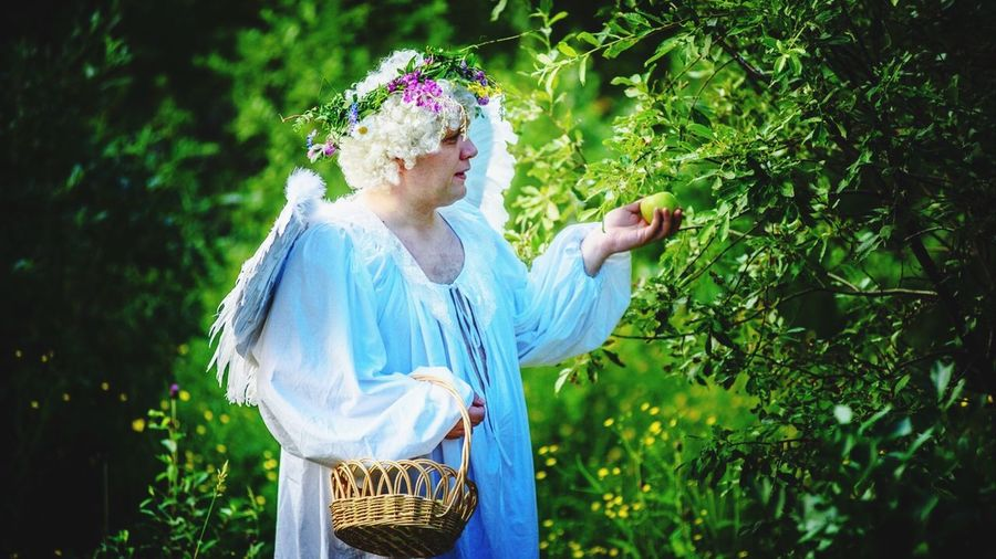Person dressed as angel picking apples