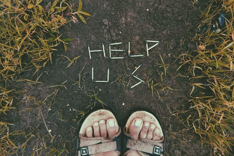 help us....!!! EyeEmNewHere EyeEm Best Shots Grass Green Color EyeEm Nature Lover EyeEm Gallery EyeEm Selects Awesome_shots Awesome Monsoon First Eyeem Photo Plant Helping Refugees Matchstick Low Section Standing Human Leg Men Directly Above Shoe High Angle View Personal Perspective Human Foot Close-up Human Feet Things That Go Together Footwear Ground Young Plant