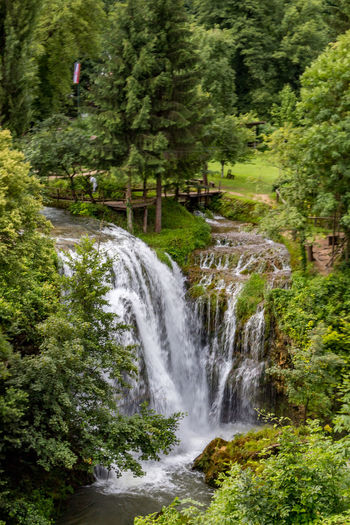 Rastoke Croatia Rastoke, Croatia Beauty In Nature Blurred Motion Environment Flowing Flowing Water Foliage Forest Green Color Land Long Exposure Motion Nature No People Outdoors Plant Power In Nature Rainforest Scenics - Nature Stream - Flowing Water Tree Water Waterfall WoodLand