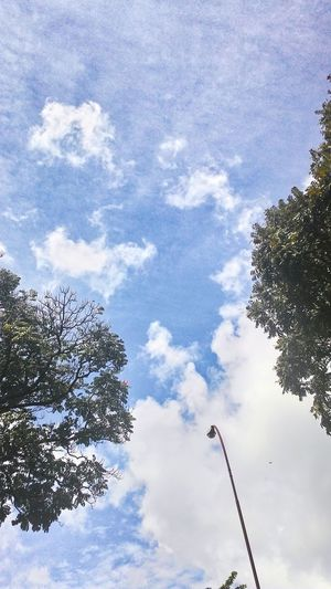Relaxing Enjoying Life Nature Clouds And Sky Clouds Hello World Naturelovers Enjoying Life Eyem Best Shots First Eyeem Photo