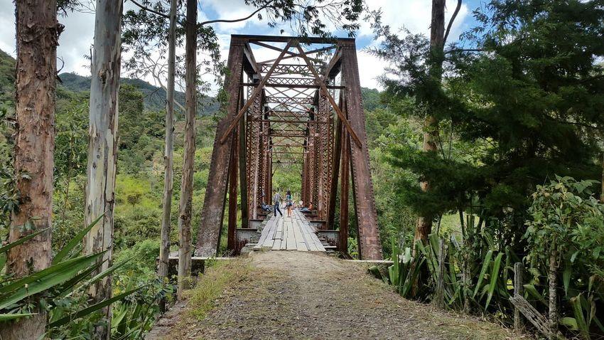Puente antiguo de piendamo cauca col.