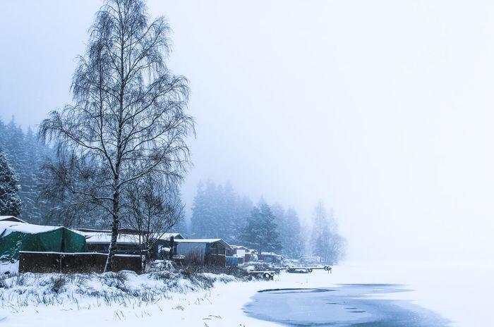Winter Snow Lake Garden