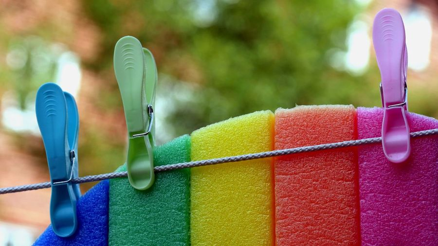 Close-up of multi colored sponge hanging on clothesline