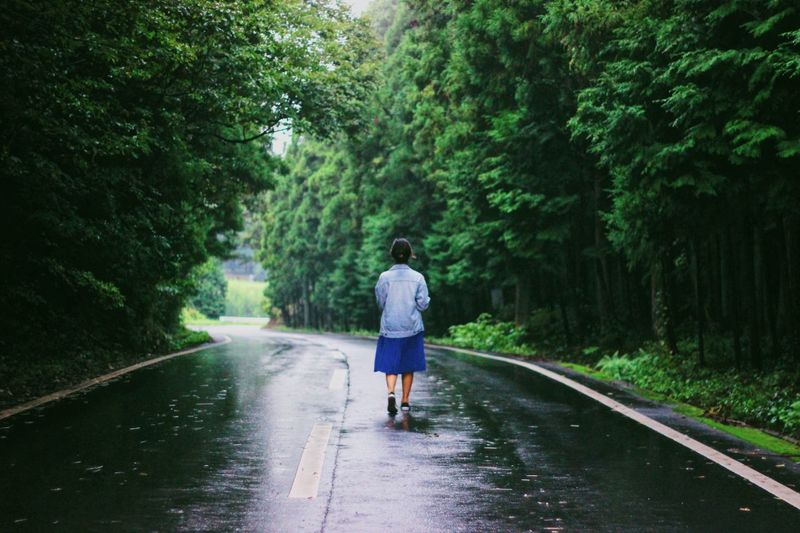 For now go move on, look back when you are ready. Rainy Season Freshness Somewhere Somewhere I Remember Middle Midst Road Forest Woman Emotion Plant Tree Rear View One Person Full Length Casual Clothing Transportation Lifestyles Green Color Real People Nature Wet Road Leisure Activity Motion Day Growth Water Outdoors Rain A New Beginning