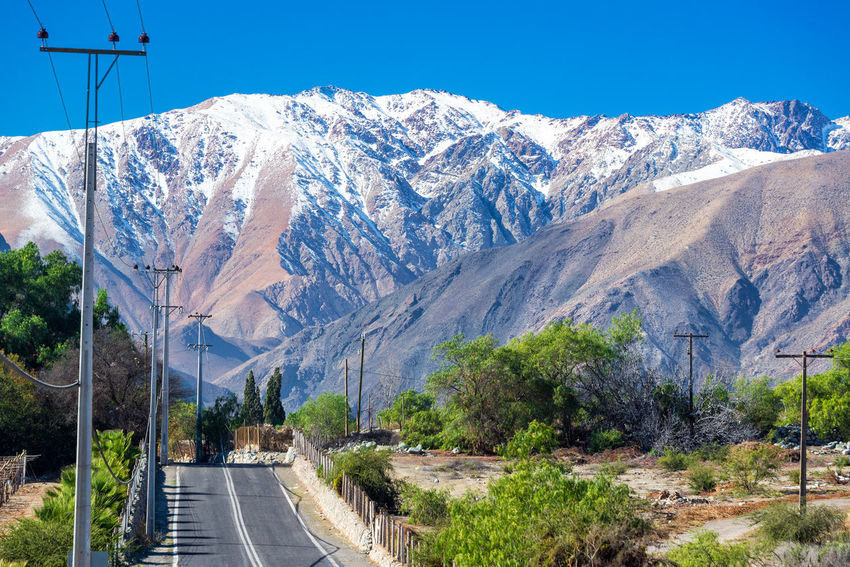 Road winding through the Andes mountain range near La Serena, Chile Agriculture Beauty In Nature Chile Clear Sky Country Countryside Elqui Green Highway Hill Idyllic Landscape Mountain Nature Outdoors Road Scenics South America Tourism Tranquility Travel Destinations Tree Valley Vicuña Vineyards
