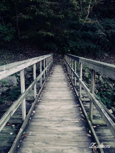 Backroadsofwestvirginia Leaves 🍁 Fall Bridge - Man Made Structure Outdoors Beauty In Nature WVGirl