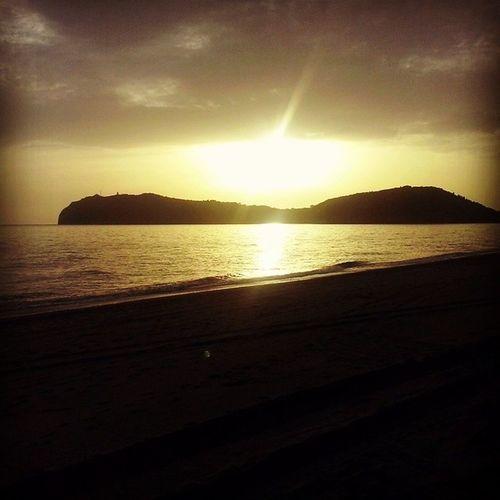 Marinadicamerota Sea Paesaggiostupendo Sole incanto beautiful instagram instasea instagood instafollow likesforlikes l4l likes likeforlike <3