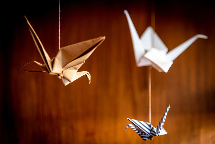 Deep bokeh of three origami swans hanging from the roof with a wooden background