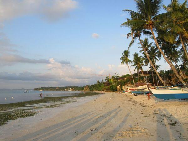 Philippines Panglao Bohol Philippines Bohol Water Beach Tree Sea Land Sky Sand