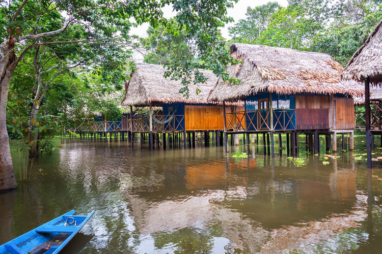 Bungalows in the Amazon rain forest in a flooded area on stilts near Iquitos, Peru Amazon Amazonia Background Flood Flooded Forest Green Holiday Hut Iquitos  Iquitos, Perú Jungle Lake Lodge Nature Park Peru Rainforest Reflection River Travel Tree Tropical Vacation Water