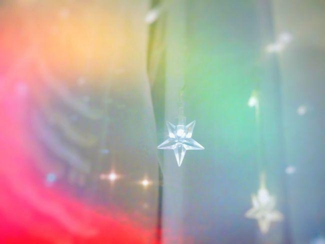 Close-up Selective Focus Fragility Freshness Christmas Lights Lights Star LED Led Lights