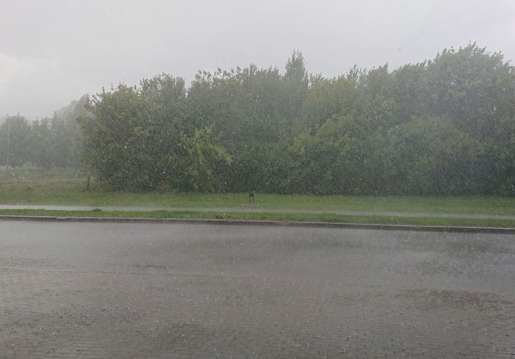 Rain Raining