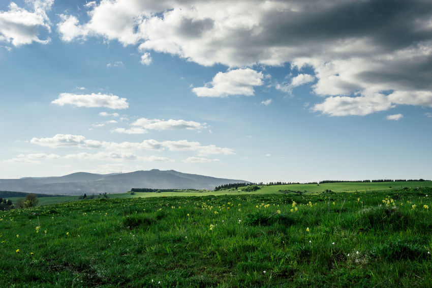 Sky Landscape Environment Cloud - Sky Tranquil Scene Beauty In Nature Tranquility Scenics - Nature Land Plant Field Green Color Nature Grass No People Day Non-urban Scene Idyllic Outdoors Mountain Harz Brocken Harzmountains