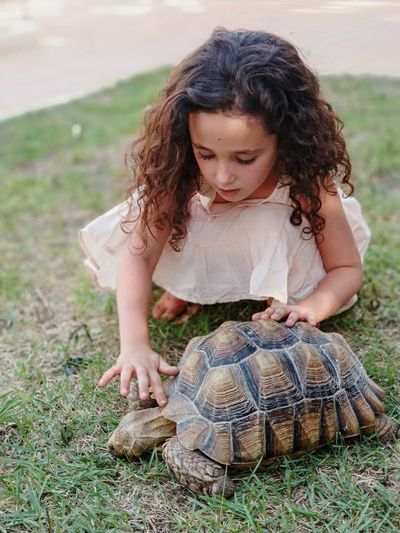 Girl touching turtle while crouching on field