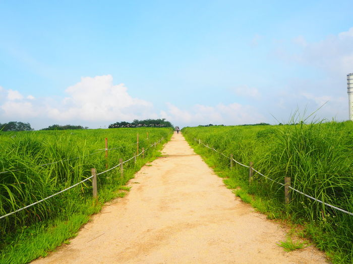 Beautiful Day Beautiful Nature Beautiful Weather Blue Sky Countryside Field Good Weather Grass Grassy Haneul Haneul Park Journey Journey Into The Light Journeyphotography Journeys Landscape Outdoors Path Path In Nature Pathway To Heaven Pathways Relaxing Moments Rural Scene Summer Summer Time