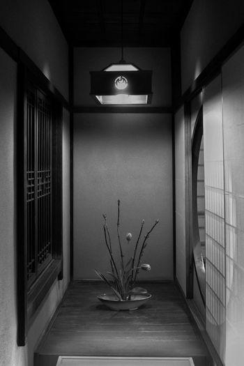 生け花 IKEBANA Flower Arrangement Flower Art 道後温泉本館 (dogo Onsen)Black And White Monochrome Japanese  Simple Interior Simplicity Interior Design Simple Beauty Japanese Culture Hello World Enjoying Life Travel Photography