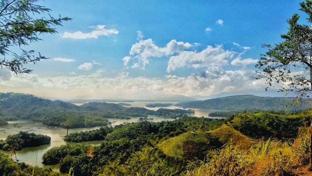 Riam Kanan Irrigation Banjarmasin Kalimantan Selatan Riamkanan EyeEmNewHere EyeEm Indonesia EyeEm Phone PhonePhotography Tree Nature Landscape Scenics Beauty In Nature Cloud - Sky Sky Forest No People Outdoors