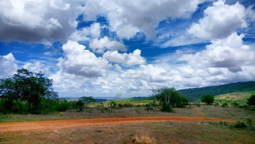 Cloud - Sky Rural Scene Nature Tranquility Agriculture Day No People