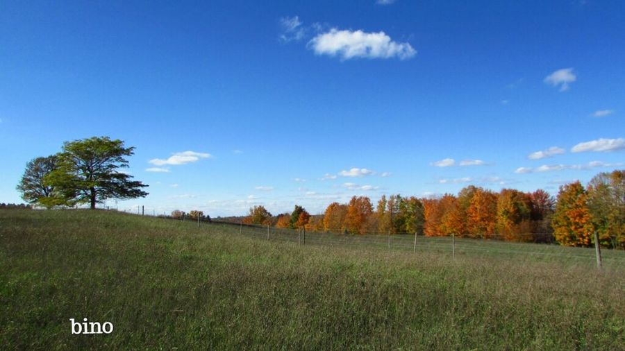 Autumn Beauty Out Shooting Beautiful Blue Sky☁ Rural Scenes Landscape_photography From The Outlook Scenics - Nature Tustin Michigan