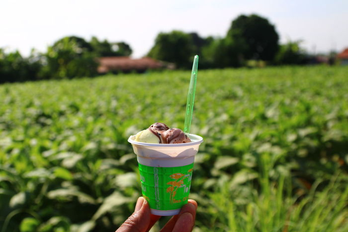 Close-up Day Disposable Disposable Cup Drink Focus On Foreground Food And Drink Freshness Holding Human Body Part Human Hand Ice Cream Ice Cream ❤ One Person Outdoors People Ready-to-eat Refreshment