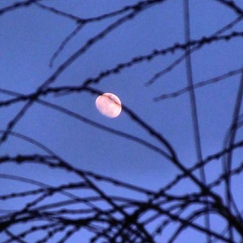 Lunalunera Skylovers Moon M ásmaja Zaragoza igersaragon igerszgz