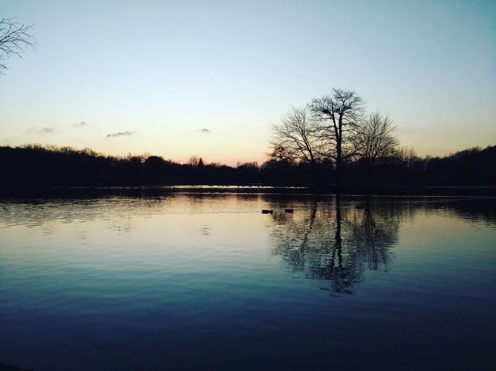 Reflection Water Lake Sunset Silhouette Sky Tranquil Scene Nature Beauty In Nature Outdoors Tree