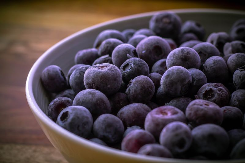 Frozen blueberries Blueberries Food And Drink Food Healthy Eating Wellbeing Freshness Fruit Large Group Of Objects Berry Fruit Close-up Bowl Still Life Abundance No People Indoors  Container