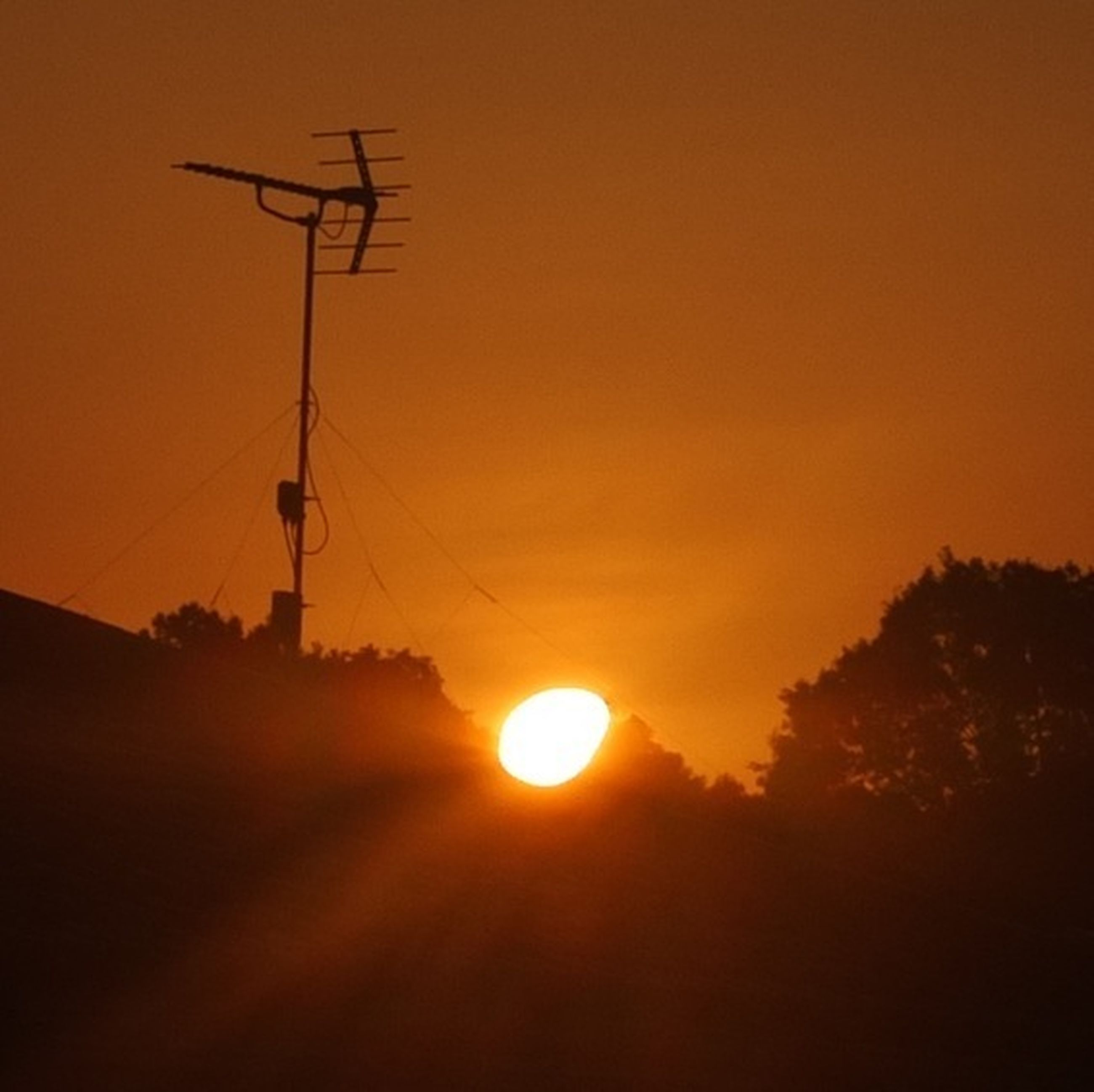 sunset, orange color, silhouette, sun, beauty in nature, scenics, tranquility, power line, sky, nature, tranquil scene, electricity pylon, tree, electricity, fuel and power generation, idyllic, landscape, connection, sunlight, low angle view