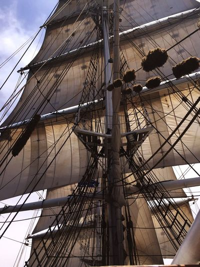 Low angle view of rigging of sailing ship