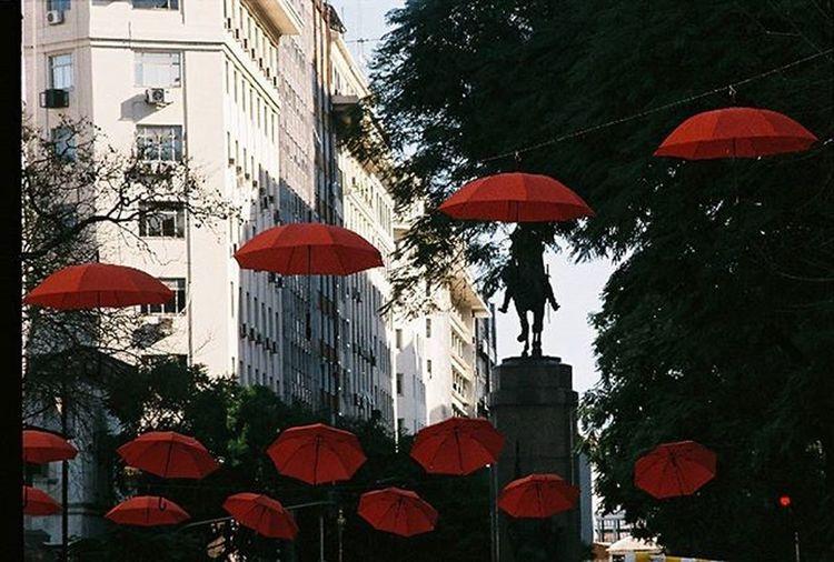 Nikonf301 Fotografiacolor Fotografiaanalogica Analoguephotography Colorphotography Umbrella Buenosairesstreet Streetpgotography