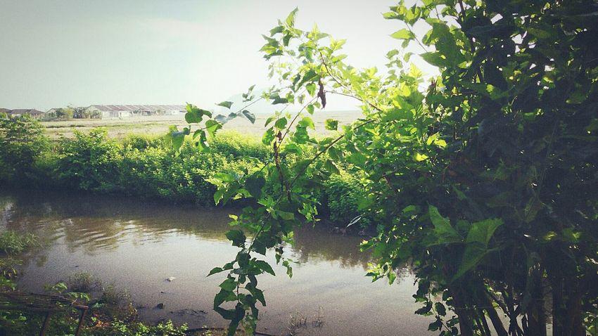 Mada River At Alor Setar Malaysia