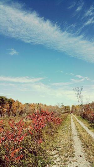 Enjoying Life Countryside Sydenham Ontario Canada Kingston First Eyeem Photo