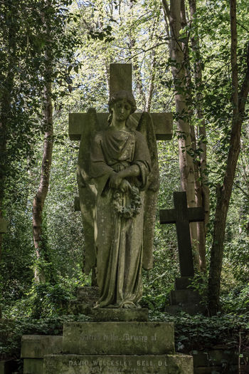 Art And Craft Tree Sculpture Statue Human Representation Plant Religion Representation Grave Cemetery Male Likeness Spirituality Belief Creativity Nature Craft Day Sadness No People Outdoors Cross Highgate Cemetery Green Trees Growth Gravestone Victorian Cemetery