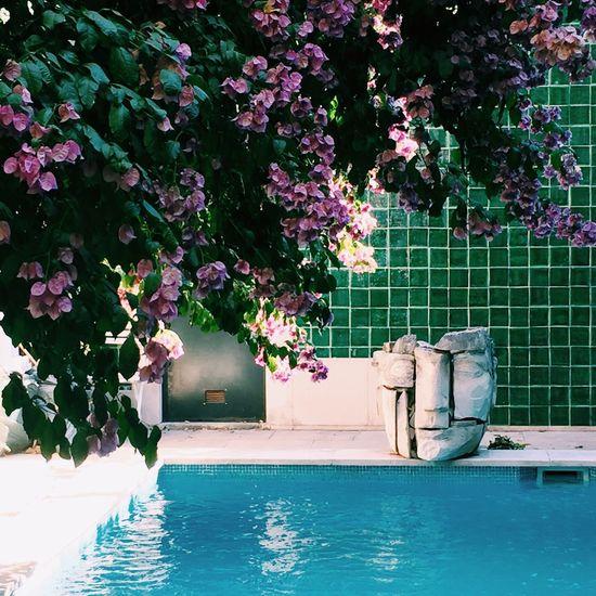 Poolday PoolDay 🌊 First Eyeem Photo