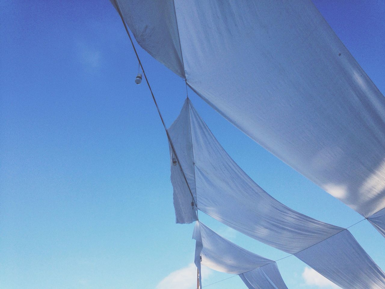 blue, low angle view, outdoors, day, no people, sky, clear sky, nature, close-up