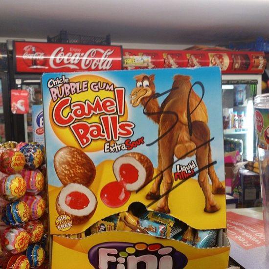 Camel balls! Gotta Be Kiddin