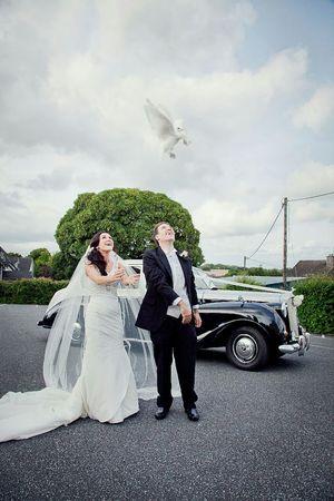 Weddingphotography My Wedding Day Weddings Wedding My Wedding Love <3 Doves Wedding Day Best Day Of My Life Vintage Cars