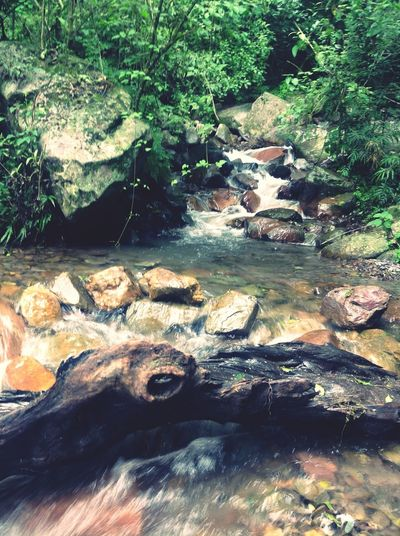Water Waterfall Nature Paisaje