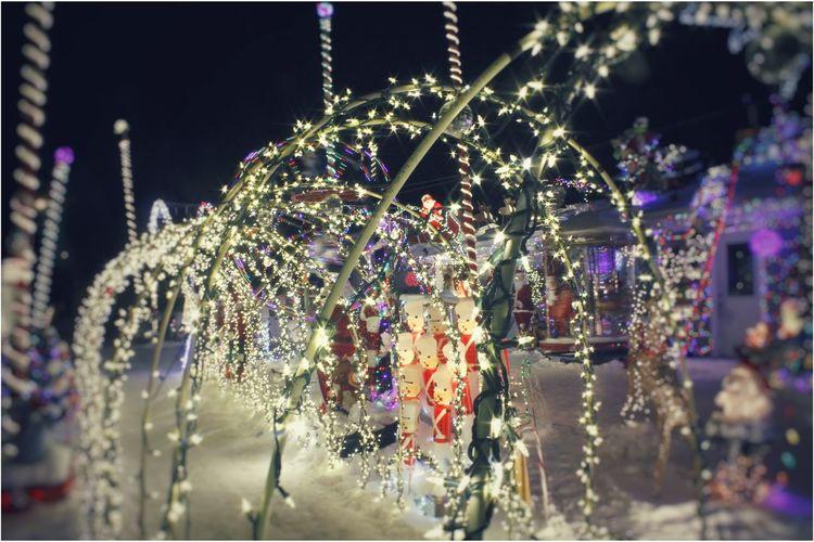 Best Christmas Lights Snow SuperCold  Lights Griswaldfamilychristmas Stars Marcusjohnson Bright