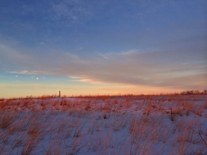 Winter Prairie Prairie Scenes Beautiful Nature