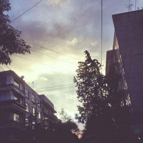 🍃🍂Mexico City Lovely