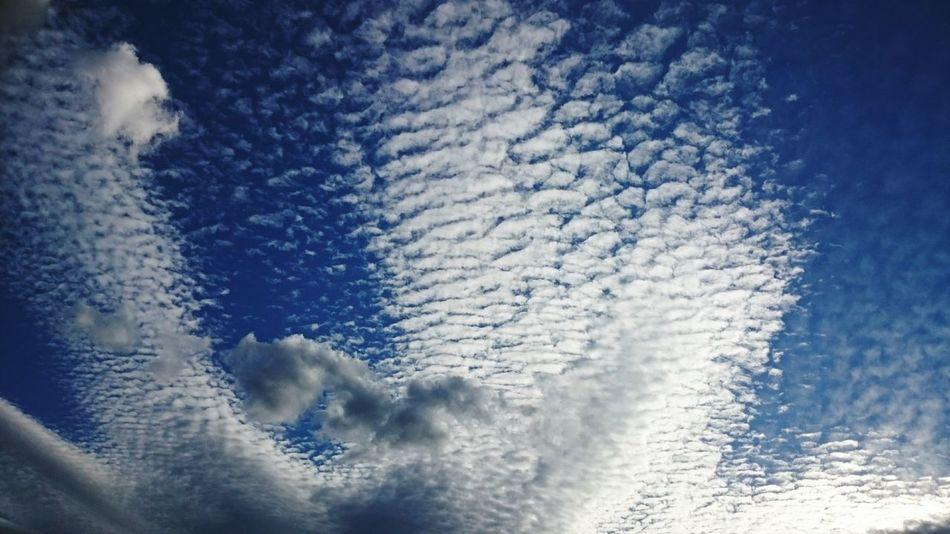 Clouds And Sky Clouds Sky_collection Sky Ciclogénesis Desdemiventana Seavecinantormentas Hello World Taking Photos Nubes Y Cielo