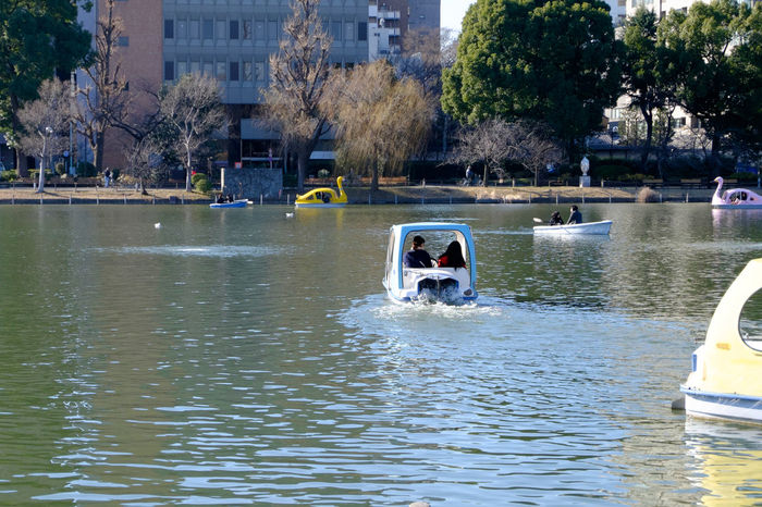 不忍池 Boat Fujifilm Fujifilm X-E2 Fujifilm_xseries Japan Japan Photography Pond Tokyo Ueno ボード 上野 不忍池 東京 池