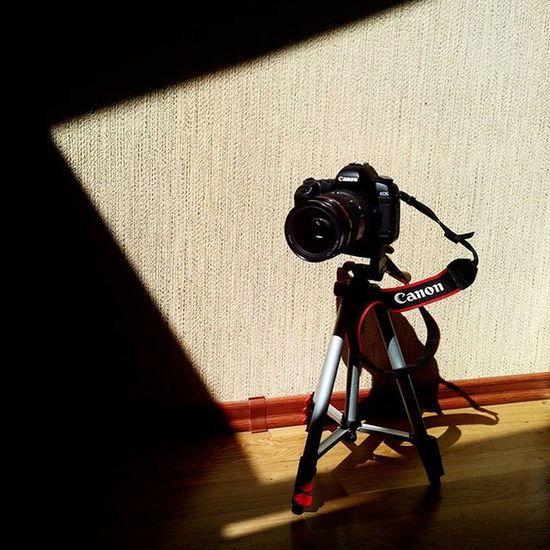 цветныекартинки фотики фотоаппарат авторскиеоткрытки минимализм Minimalism светцветитень светотень