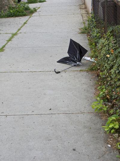 After The Storm Broken Black Umbrella On The Street Human Tarce