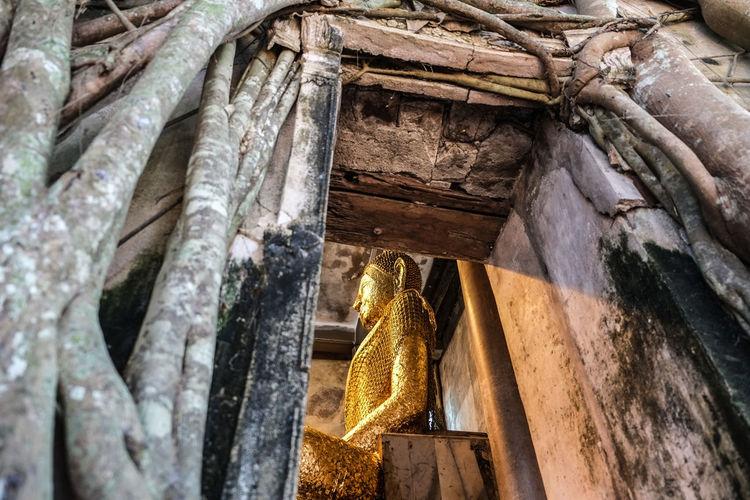 วัดปรกโพธิ์ Buddah Church Faith Old Ruined Temple Textured  Thailand Wall Wood First Eyeem Photo Fujifilm X-a1